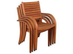 International Home Miami  Amazonia Eucalyptus Arizona Dining Arm Chair (4 Piece Set)