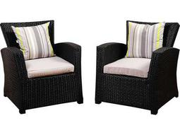 International Home Miami Atlantic Staffordshire 2 Piece Black Wicker Arm Chair Set with Light Grey Cushions