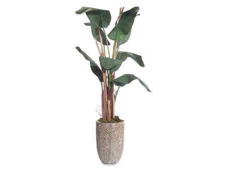 John Richard Small Banana Tree Floral Arrangement