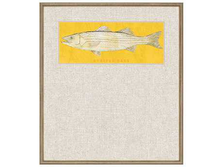 Paragon Golden Striped Bass Giclee Painting