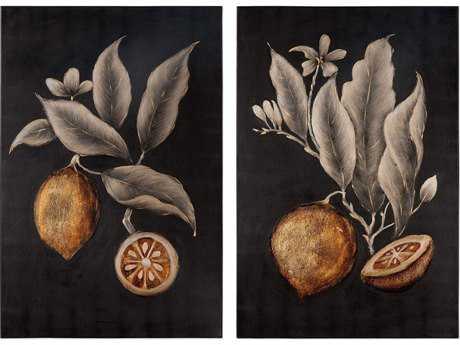 Uttermost Citrus Study Hand Painted Art(Two-Piece Set)