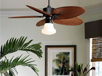 From reducing your home's energy bills, to complementing your home's comfort, ceiling fans add function and aesthetic value to your home. Learn more about fan construction, installation, and types.