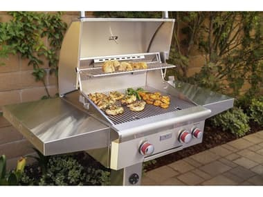 AOG T Series Post Mount 24'' BBQ Grill with Rotisserie and Back Burner AG24NGT