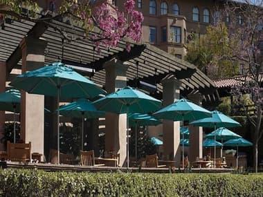 Treasure Garden Commercial Aluminum 9' Octagon Push Up Lift Vented Umbrella EXUCP409