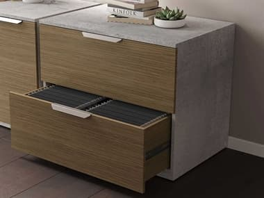 Modloft Broome Latte Walnut File Cabinet MOLDEWA703LWAL