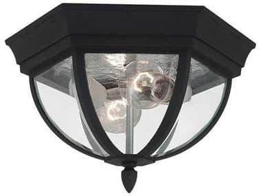 Sea Gull Lighting Bakersville Black 2 Glass LED Outdoor Ceiling Light SGL7813612