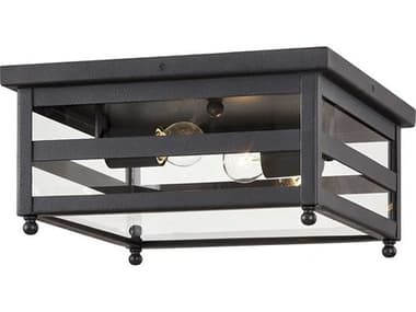 Troy Lighting Holstrom Forged Iron 2-light Glass Outdoor Ceiling Light TLC7430