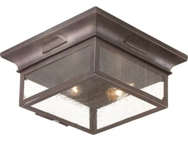 Troy Lighting Newton Old Bronze Two-Light 13'' Wide Outdoor Flush Mount TLCCD9000OBZ