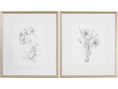 Uttermost Grace Feyock Botanical Sketches Framed Prints (Set of Two) UT33649