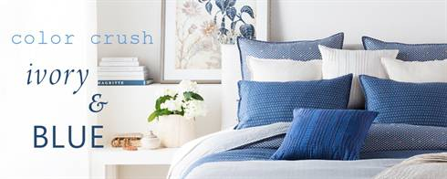 Color Crush: Blue & Ivory
