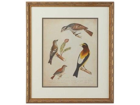 Chelsea House Bonapart Birds III Painting
