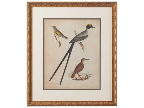 Chelsea House Bonapart Birds IV Painting