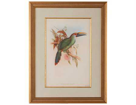 Chelsea House Wood Frame With Old Gold Tropical Toucans I