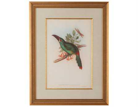 Chelsea House Wood Frame With Old Gold Tropical Toucans II