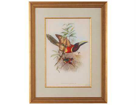 Chelsea House Wood Frame With Old Gold Tropical Toucans III