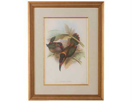 Chelsea House Wood Frame With Old Gold Tropical Toucans VI