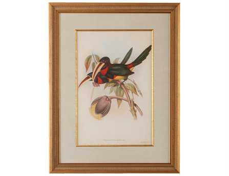 Chelsea House Wood Frame With Old Gold Tropical Toucans VIII