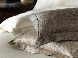 Eastern Accents Pillows & Throws Category