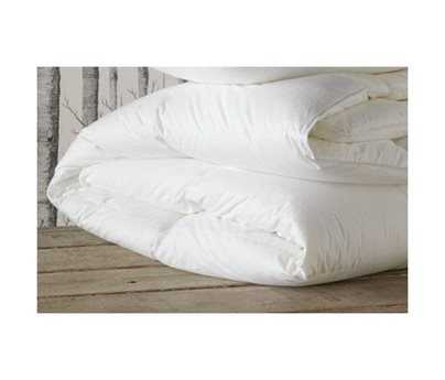 Eastern Accents Celesta Luxe Down Light Comforter