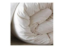 Eastern Accents Comforters Category