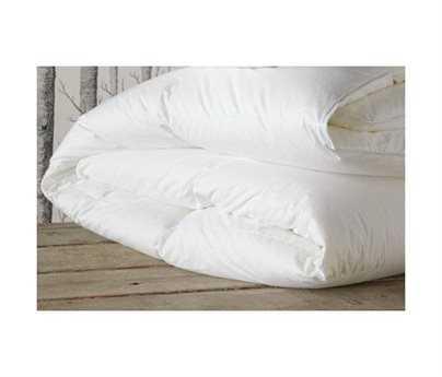 Eastern Accents Celesta Luxe Down Deluxe Comforter