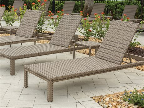 Ebel Tremont Driftwood Wicker Lounge Set