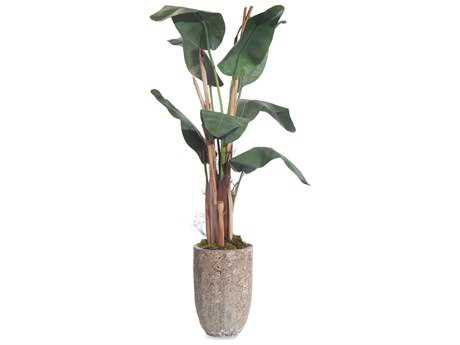 John Richard Small Banana Tree Floral Arrangement