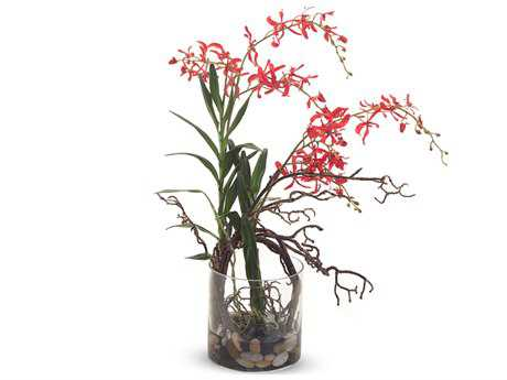 John Richard Red Spider Orchid Floral Arrangement