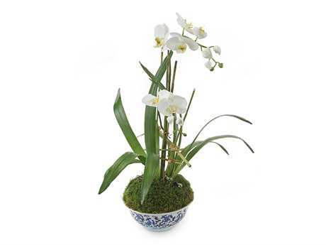 John Richard Blue Orchids Floral Arrangement in Vase