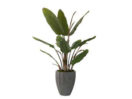 John Richard New Banana Tree Floral Arrangement
