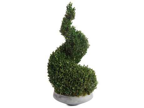 John Richard Natural Boxwood Spiral I Decorative Tree