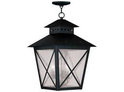 Livex Lighting Outdoor Hanging Lighting Category
