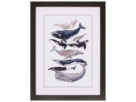 Paragon Mccavitt Whale Display I Giclee Painting