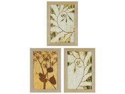 Paragon Kinder Harris Jardine Nature Study II Painting (Three-Piece Set)