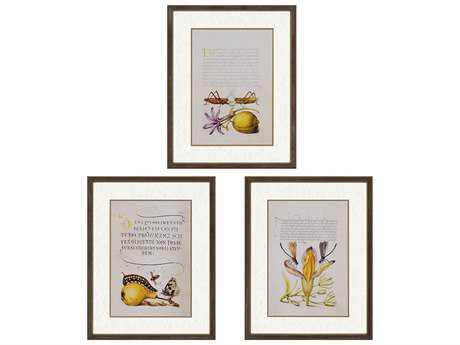 Paragon Burney Vintage Botanicals I Exclusive Giclee Painting (Three-Piece Set)