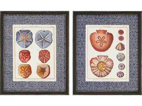 Paragon Diderot Sand Dollars Painting (Two-Piece Set)