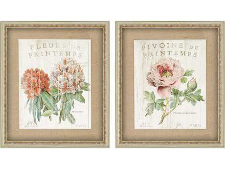 Paragon Schlabach Printemps Shadow Box Wall Art (Two-Piece Set)