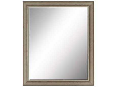 Paragon Beveled 25 x 31 Dark Wash Silver Wall Mirror