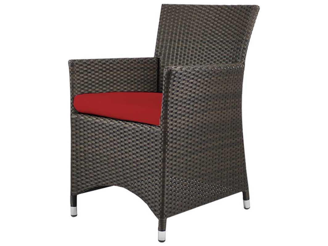 Source outdoor furniture st tropez wicker dining arm for Source outdoor furniture