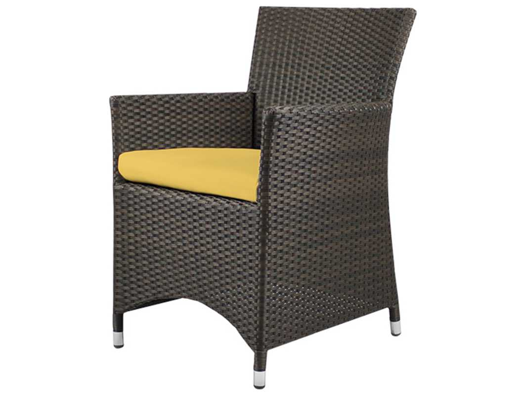 Source Outdoor Furniture St. Tropez Wicker Dining Arm ...