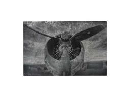 Sterling Alton World War II Airplane Print Etched Print On Aluminium Wall Art