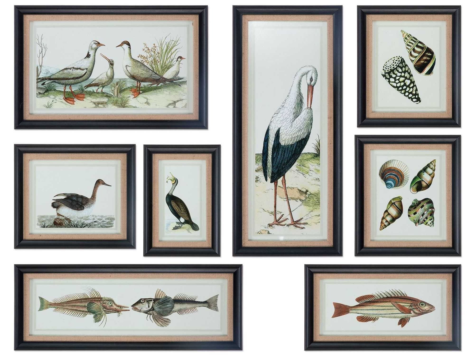 Uttermost seashore collage prints eight piece set ut33631 for Prints for home decor