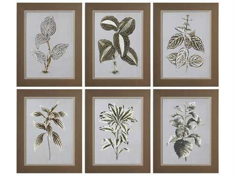 Uttermost Grace Feyock Verigated Plant Prints (Set of Six)