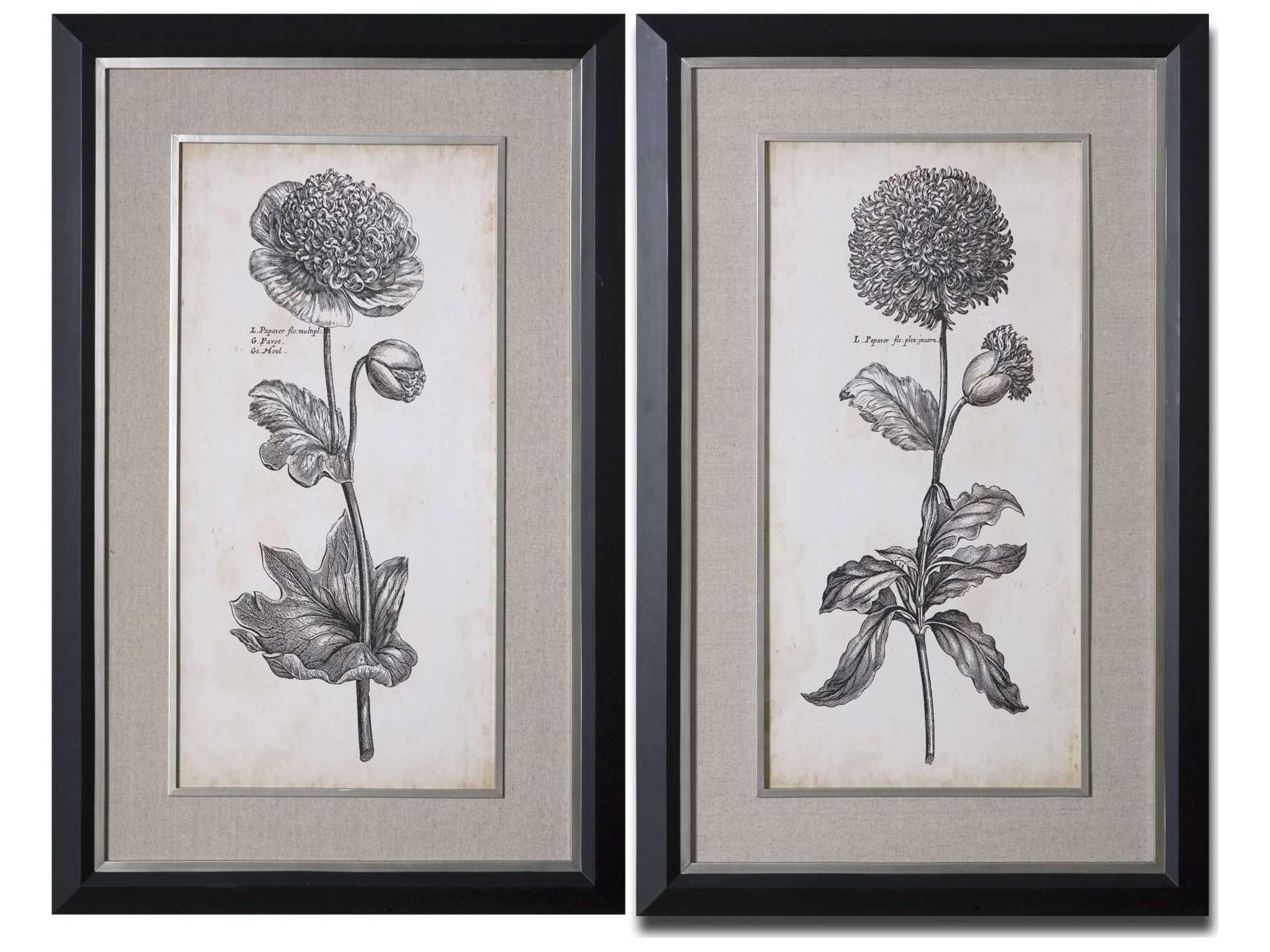 Uttermost Singular Beauty Floral Wall Art 2 Piece Set