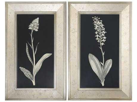 Uttermost Antique Floral Study Framed Wall Art (2 Piece Set)
