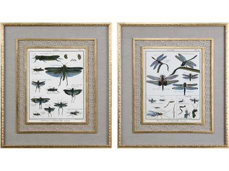 Uttermost Grace Feyock Naturelle Insects Print Art (Set of Two)
