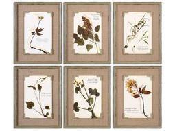 Uttermost Ceramic Florals Framed Wall Art (6 Piece Set)