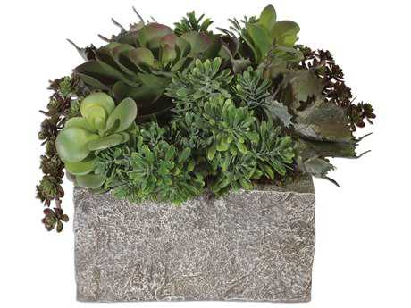 Uttermost Black Rock Desert Succulents