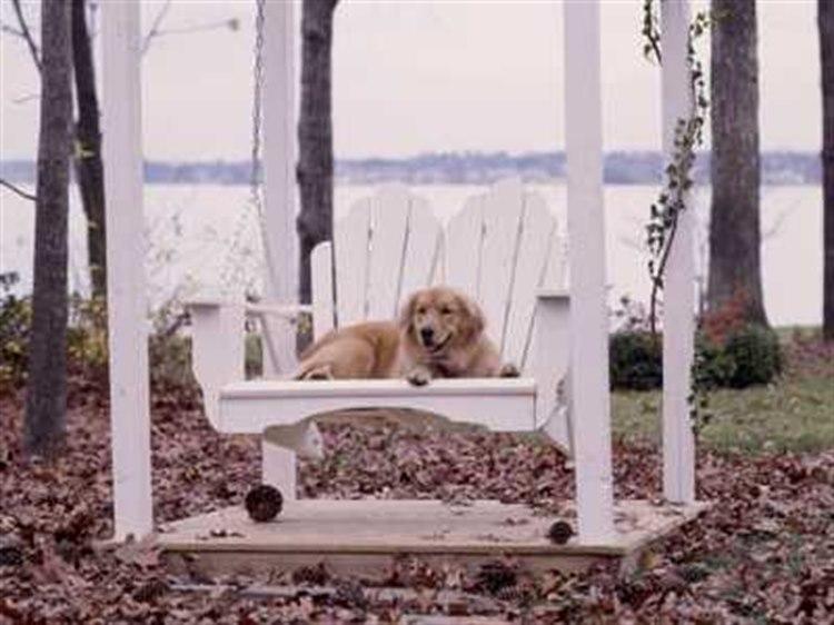 Uwharrie Chair Fanback Wood Arm Rocker Swing