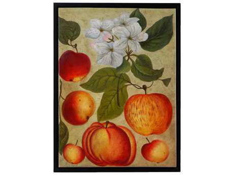 Wildwood Lamps Apple Study Framed Acrylic On Canvas Artist Hand Painting Wall Art